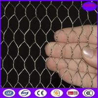 China Hot Dipped Galvanized Chicken Wire Mesh , 50mm 2'' Bird Cage Wire Mesh on sale