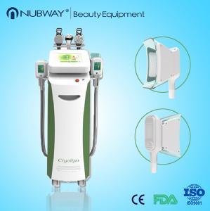 China cryolipolysis fat freeze slimming machine/cryo electroporation machine wholesale