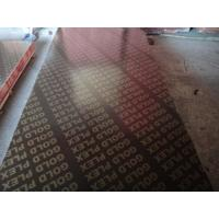 China Waterproof film faced plywood,film faced plywood/China factory plywood/ finger joint film faced plywood wholesale