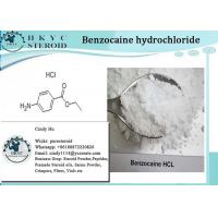 China Pain Relief Pharmaceutical Raw Material CAS 23239-88-5 Benzocaine Hydrochloride wholesale