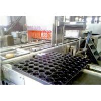 China Industry Automatic Cake Maker Cooling Line Tunnel Baking Oven Included wholesale