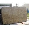 China Giallo Forito Granite Slab/ Tile/ Wall Tile wholesale