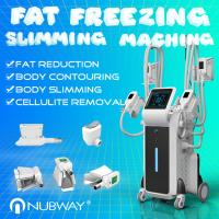 Buy cheap Professional Forimi cool sculpting technology body slimming weight loss cryolipolysis machine from wholesalers