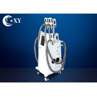 China Ce Certificate Salon Cryolipolysis Slimming Machine For Fat Loss wholesale