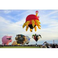 China Hot Air Inflatable Advertising Balloons Custom Shape For Outdoor Sports on sale
