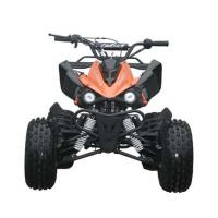 China Engine 125cc Fully Auto Youth Racing ATV With Reverse Max Load 65kg Electric Start on sale