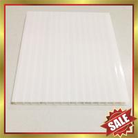 China opal PC hollow sheet,hollow polycarbonate sheet,pc sheeting for greenhouse and building cover wholesale