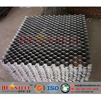 China 309 Hex Mesh Grid Flue Gas Lines, 309 hexsteel, 309 hexmetal on sale