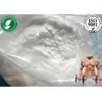 China 315-37-7 Muscle Growth Steroid powder Testosterone Enanthate for muscle building wholesale