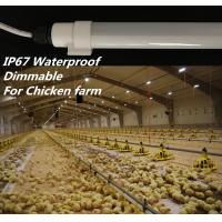 China Dimmable T10 Chicken Farm Lighting , SMD2835 Led Tube Light With Connector wholesale