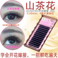Light 3D Russian Volume Eyelash Extensions , 3D Semi Permanent Eyelashes for sale