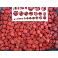 China IQF Frozen Strawberry Dice wholesale