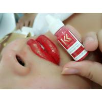China High Conentration Eyeliner Permanent Makeup Lips Tattoo Pigment Free Iron Oxide wholesale