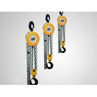 China Customized 1 Ton / 5 Ton Electric Chain Hoist , Electric Winch Hoist Easy To Handle wholesale