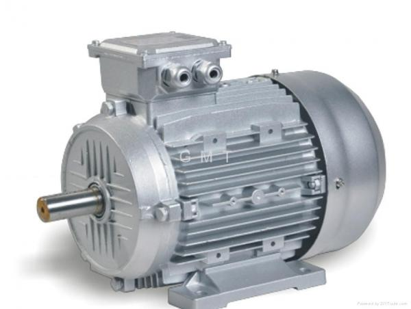 Aluminum frame electric motor images for High efficiency electric motors