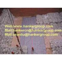 China Cement and Clinker wholesale