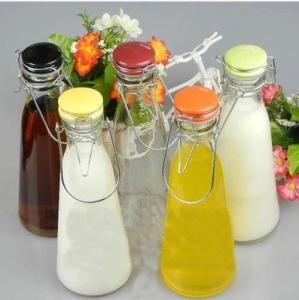 China 500ml  1000m beverage bottle with handle Glass milk bottles juice bottle with ceramics cap on sale
