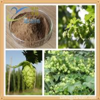 China Hops Extract/Hops Flower Extract/Humulus Lupulus Extract wholesale