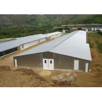 China Prefab Light Steel Structure Poultry House Poultry Shed Construction With Control Room wholesale