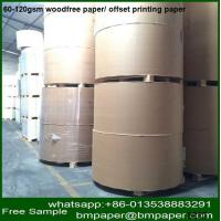 China offset paper/wood free paper supplier in China wholesale