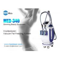China Innovative Cryolipolysis Freeze Fat Reduction Machine With 2 Handles Work Cryotherapy on sale