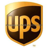 China DHL/UPS Express Delivery to Europe on sale