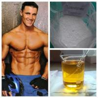 CAS 57-85-2 Testrex Raw Testosterone Powder Vulvan / Propionate Steroids For ED