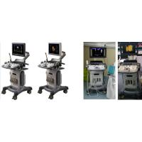 China 19 inch+10.4 LED Real time 4D color doppler buy 4d ultrasound machine price trolley wholesale