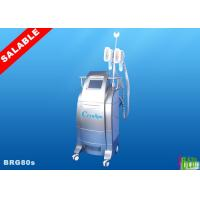 China Vertical 2 Handles Cryolipolysis Slimming Machine , Body Contouring / Coolsculpting System wholesale