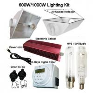 China Grow Lighting/Grow Ballast (HPS 250W/400W/600W/1000W) wholesale