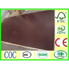 China phenolic bp film faced plywood wholesale
