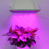 China Indoor Garden LED Panel Grow Light With Meanwell Driver , 10mm Thickness wholesale