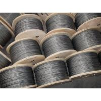 China 3mm Galvanized Steel Wire Rope , 6x37 and DIN / GB / EN12385-4 wholesale