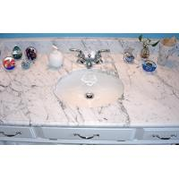 China carved natural granite countertop on sale