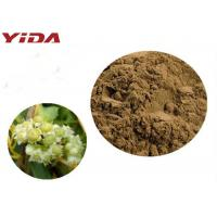China YIDA GMP Certification Dodder Seed Extract Powder Remedy Sexual Problems wholesale