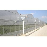 China Cheap commercial greenhouse wholesale