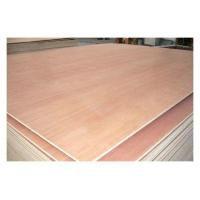China Poplar and Hardwood Pencil Card Commercial Plywood / Furniture Plywood Sheets BB/CC Grade wholesale