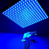 China IP44 LED Panel Grow Light For Medical Plants / Greenhouse , High Brightness wholesale