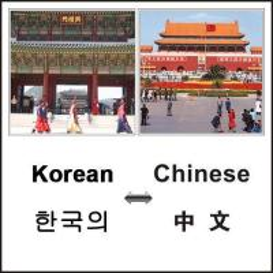 China Legal Translation for Asian/European Languages wholesale