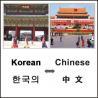 China Technical Translation for Written/Interpretation Translation wholesale