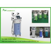 Buy cheap cryolipolysis slimming machine with 4 handles with CE certificattion from wholesalers