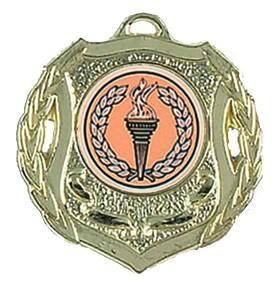 China Gold Plating Alloy Printed Medal Ribbon wholesale