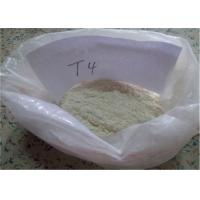 Lose Weight Pharmaceutical Raw Materials 51-48-9 L - Thyroxine T4 776.87 MW