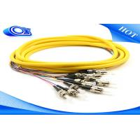 China ST Fiber Optic Pigtail 3 Meters Jacketed 12Pk SM Yellow Jacketed For Multimedia wholesale