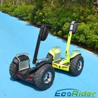 China 19 Inch 2 Wheel Electric Scooter 2000w Outdoor Short - Distance Travel wholesale