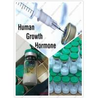China Legal Kigtropin Human Growth Hormone Supplements for Women Losing Cellulite and Wrinkle wholesale