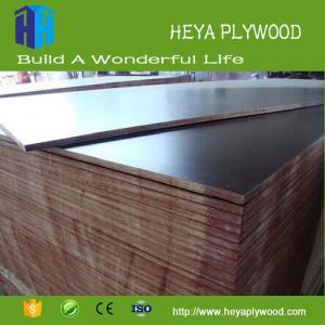 China Wholesale black coated b2 grade poplar plywood quotation 18mm on sale