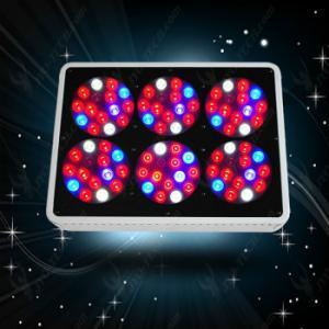 China JYO Full Spectrum -brand Apollo6 Hydro LED Grow Light 90*3watt wholesale