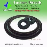 2013 hot sell double lip TC oil seal in NBR material (High Precision!)