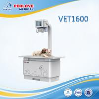 China Stable performance veterinary digital X ray system VET1600 wholesale
